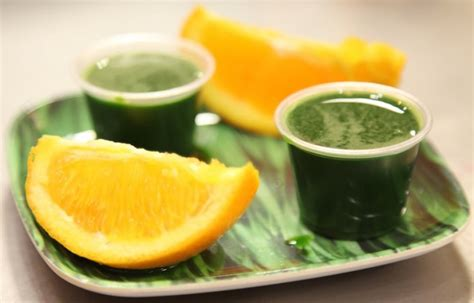 Wheat Grass Juice Side Effects And Benefits
