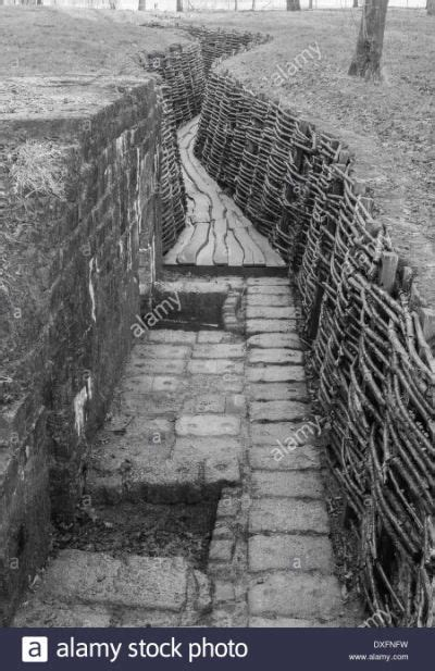 restored german ww trenches  ww  trench warfare