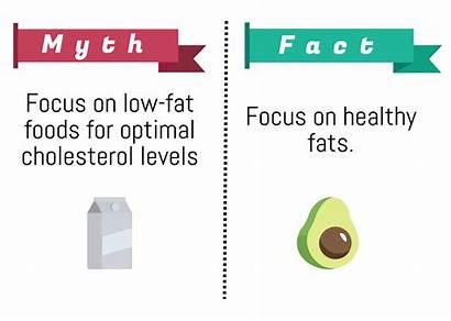 Cholesterol Low Fat Should Foods Levels Myth
