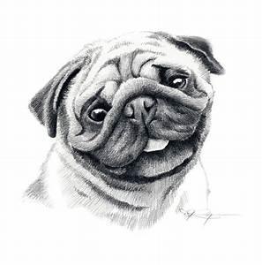 Image Gallery pug drawings