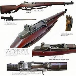 Ammo And Gun Collector  M1 Garand