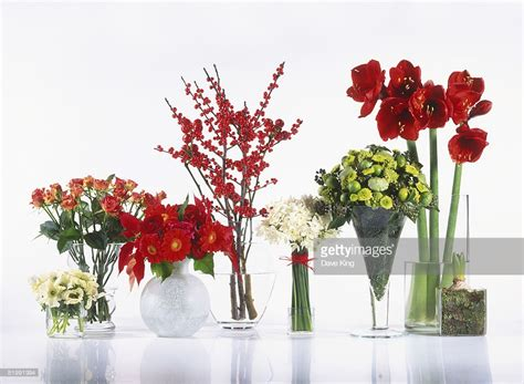 Different Types Of Cut Flowers Arranged In Vases Including