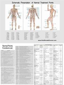 Light Alcohol Content Chart Healthmateforever Yk15ab Tens Unit Feel Relief