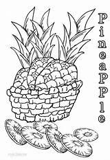 Pineapple Coloring Printable Sheets Cool2bkids Pineapples Printables Fruits Children Sheet Fruit Tart Pine Popular sketch template