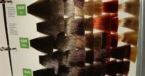 Shades Eq Gloss Swatches Love Em Projects To Try