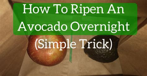 how to ripen avocados is your avocado brick solid use this trick to ripen it fast davidwolfe com