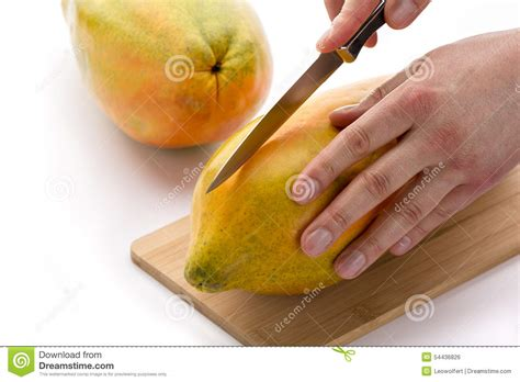 how to cut a papaya knife positioned for a first cut through a papaya stock photo image of cook dessert 54436826