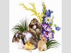 Obrázky 1o Velikonoce