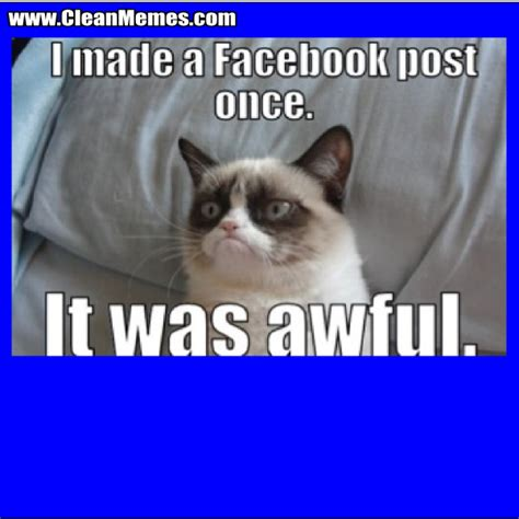 Grumpy Cat Meme Clean - grumpy cat meme clean 28 images cat memes clean memes the best the most online page 37