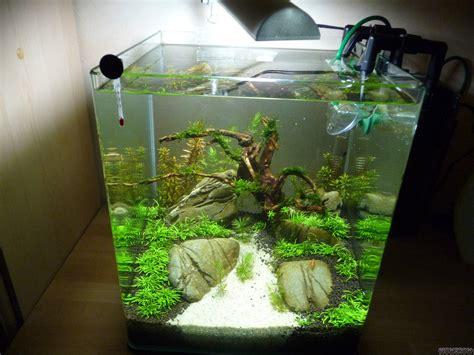nano becken flowgrow aquascapeaquarien datenbank