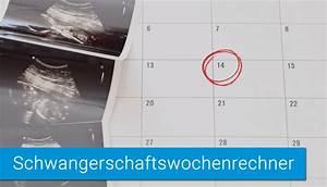 Eisprung Nach Ausschabung Berechnen : ssw rechner schwangerschaftsrechner geburtstermin und ssw berechnen ~ Themetempest.com Abrechnung