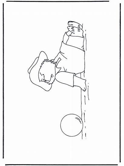 Paddington Bear Fargelegg Advertisement Annonse
