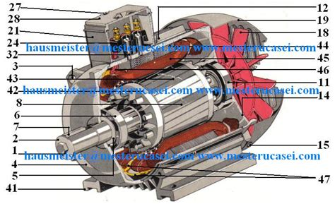 Motor Trifazic by Baboo Hausmeister 187 Motorul Electric Trifazic Componenta