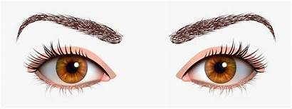 Eyes Clipart Brown Transparent Female Clipartkey