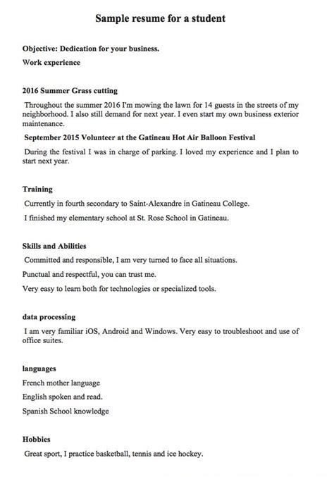 pin  ririn nazza   resume sample job resume