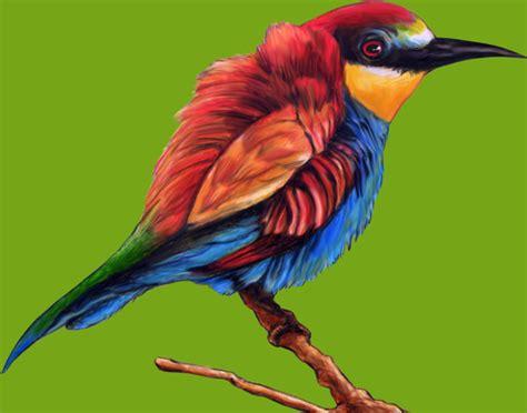 colorful rainbow bird illustration mockup designhooks