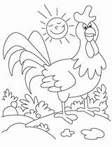 Sunny Coloring Rooster Wander Around Sky sketch template