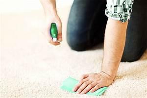 Comment Nettoyer Une Moquette : nettoyer adom a ~ Dailycaller-alerts.com Idées de Décoration