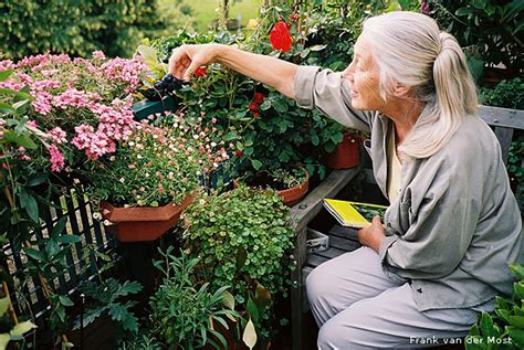 Garden Answer Age by Getting Sore In The Garden Hecatedemeter