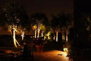 Landscape lighting winter garden fl a e electrical