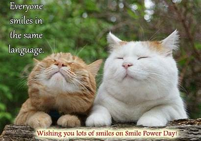 Smile Cats Power Smiles Cards Everyone Ecard