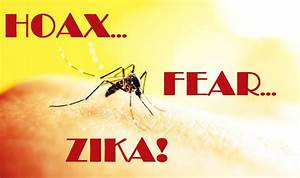 10 Reasons Why Zika Virus Fear is Another Fraudulent ...