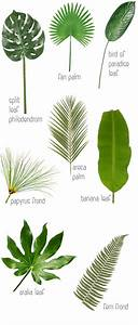 Home decor Ideas: Use tropical leaves