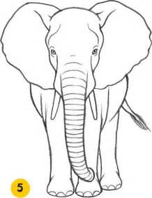 How to Draw Elephant Drawing