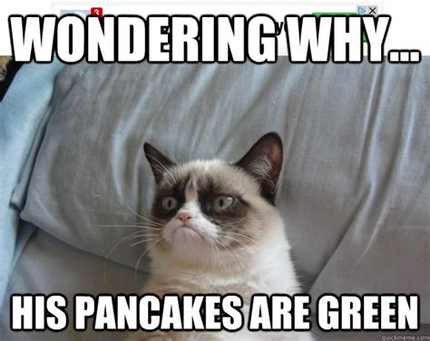Pancakes Eating Cat  Funny Cats Pictures With Captions