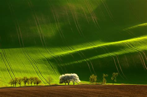 Mind Blowing Examples Landscape Photography Bored