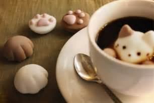 cat marshmallows enjoy latte at home with marshmallow cats