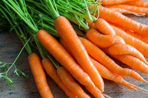 vidéo cuisson des carottes sous vide à basse température