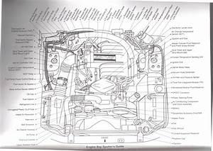 1989 Mustang Wiring Harness Diagram
