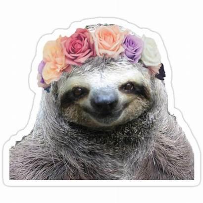 Sloth Crown Flower Redbubble Stickers Sticker