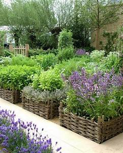 Picture, Of, Backyard, Herb, Garden, Arrangement, Ideas, 46