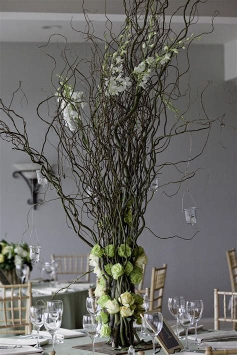 images  curly willow cues  pinterest