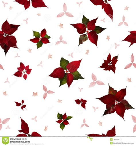 christmas plants images seamless poinsettia christmas flowers stock photos image 34605583