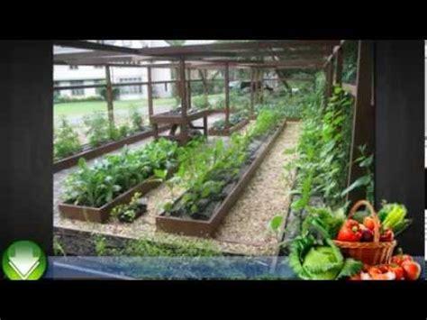 garden in pots beginners container garden vegetables for beginners vegetable gardening in containers youtube