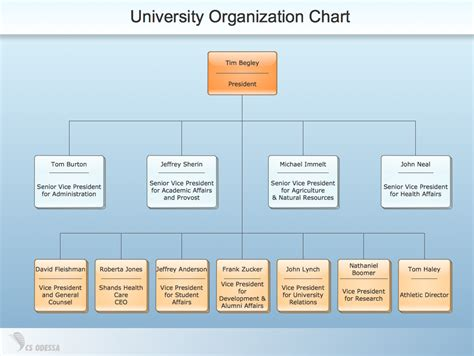 org chart organizational structure