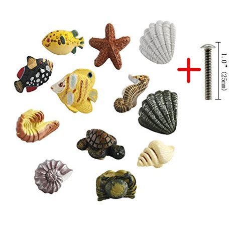 olizee seashell nautical decor cabinet knobs for drawers