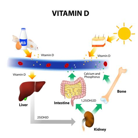 Uv B L For Vitamin D Uk by 5 Common Signs Of Vitamin D Deficiency You Shouldn T