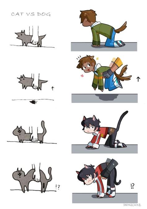 Voltron Memes - 438 best voltron images on pinterest space cat form voltron and drawing
