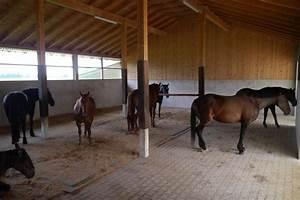 tapis caoutchouc de box matelas confort pour chevaux With tapis caoutchouc chevaux