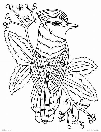 Coloring Pages Adults Animal Detailed Printable Getcolorings