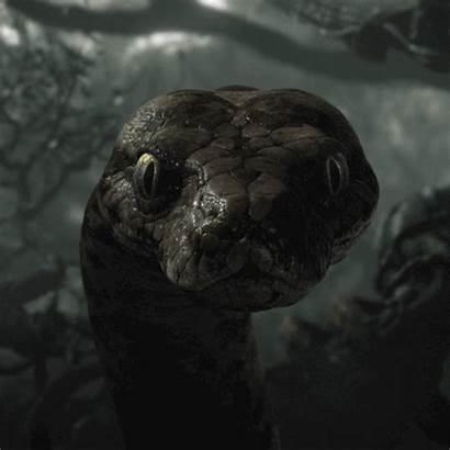 Snake Eyes Kaa Jungle Animated Pov Hypnotic