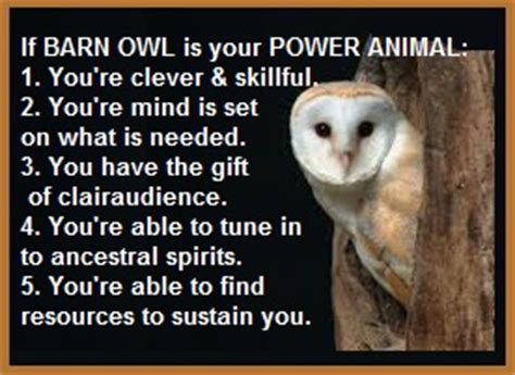barn owl quotes image quotes  hippoquotescom
