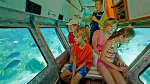 Cruise To Green Island with Submarine and Lunch