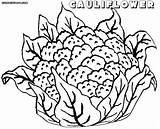Cauliflower Coloring Pages sketch template