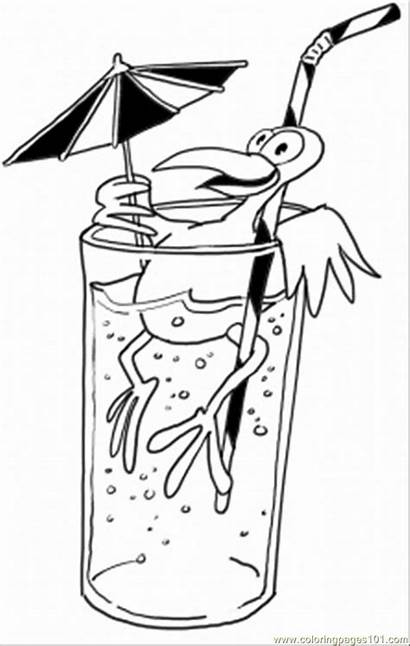 Coloring Drink Pages Bird Starbucks Drinks Having