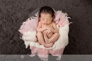 Anne Wilmus Photography, Pittsburgh Wexford newborn ...